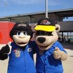 Mascots -  Axel and Roscoe