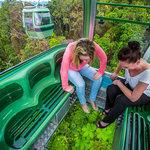 SkyRail Diamond View gondola