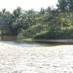 ein Backwater gleich neben dem Resort