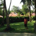 land villas