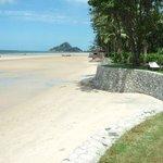The perfect beach walk.