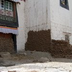 Dung patties drying on houses in old quarter, Gyantse