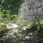 Jardin de l'hotel au rdc, des murs de deux milles ans?