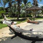 beach beds