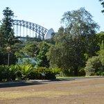 Royal Botanic Gardens (4)