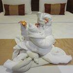 Talented housekeeping!