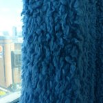 Cookie Monster curtains