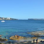 Manly Scenic Walkway (3)