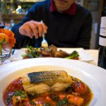 Sea Bass, Tomato and Octopus Stew