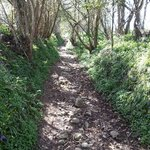 Footpath up hill from site