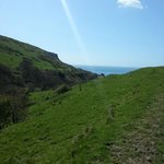 Purbeck Way. Looking towards Chapmans Pool