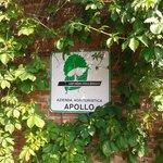 Agriturismo Apollo