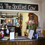 Spotted Cow Bar