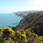 One of the stunning views on the Woody Bay walk