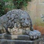 Un des lions de la cour du palais des Grands Maitres