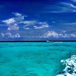 Snorkeling trip from Cozumel Palace!