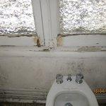 moisissures dans la salle de bains