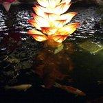 Kolam ikan dengan lampion yang romantis di sisi luar mall