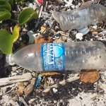 Plstic bottle brought by the sea from Jamaika