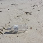 Plastic bottle left by some resort guest