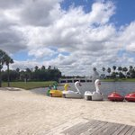 Paddle boats! 2 seater, 10$ an hour