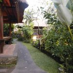 The garden in Cafe Wayan, beautiful