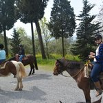 Lucca horseriding