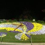 Flower clock at night