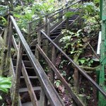 steps to get to the waterfall