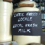 Il latte fresco - Local fresh milk