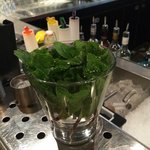 Fresh Mint leaves at the bar