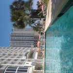 From the shade of the pool - great at 4pm!