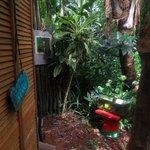 Entrance to outdoor bathroom
