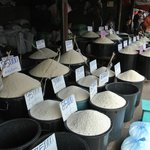 Different rice types and quality