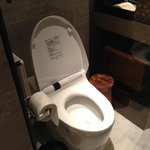 Automatic toilet system