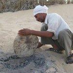 砂漠の砂で焼くパン、もううますぎです。
