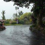 Arenal paraiso wegen