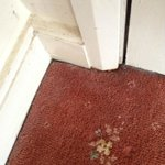 The filthy skirtings and carpets Red Lion Hotel Grasmere 2014