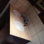 Female wash hand basins