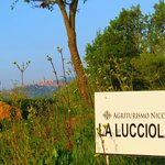 Sign for La Lucciolaia with San Gimignano in the distance