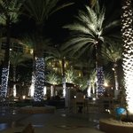 Palm trees within grounds decorated at night