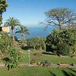 great landscaped garden