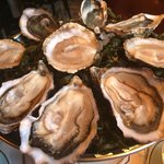 The fresh lovely oysters.