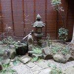 Garden outside sitting area