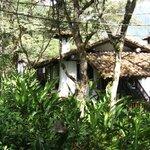 Habitación-cabañas
