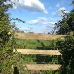 Stile across the lane