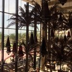 palms in the main resturant