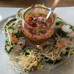 Sommerrollen- sehr lecker aromatisch und knackig- Reisblätter gefüllt mit Kräuter, Gemüse, Garne