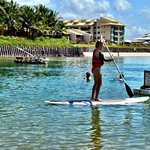 Stand Up paddle - free - SUP