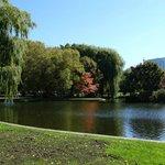 Tour takes you through this beautiful park